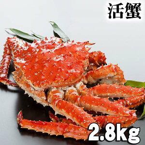 活たらばがに オス 2.8kg前後 茹でたてなら到着後、すぐ食べられる未冷凍の活きタラバ蟹です。活カニならではのお刺身用でも食べられます。焼きガニ、蒸し蟹もできる活タラバガニ