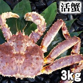 大型かに 活たらばがに 3.0kg前後 オス 茹でたてなら到着後、すぐ食べられる未冷凍のたらば蟹です。活カニならではのお刺身用でも食べられます。焼きガニ、蒸し蟹もできる活タラバガニ  (ギフト食品)