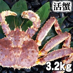 北海道産 大型かに 活たらばがに 3.2kg前後 オス 茹でたてなら到着後、すぐ食べられる未冷凍のたらば蟹です。活カニならではのお刺身用でも食べられます。焼きガニ、蒸し蟹もでき
