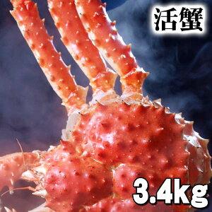 北海道産 大型かに 活たらばがに オス 3.4kg前後 茹でたてなら到着後、すぐ食べられる未冷凍のたらば蟹です。活カニならではのお刺身用でも食べられます。焼きガニ、蒸し蟹もでき