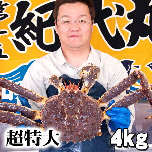 超特大タラバ 活たらばがに  4.0kg前後 茹でたてなら到着後、すぐ食べられる未冷凍のたらば蟹です。活カニならではのお刺身用でも食べられます。焼きガニ、蒸し蟹もできる活タラバガ