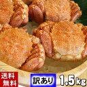 (送料無料)訳あり 毛蟹 合計1.5kg前後(2〜5尾入り) ボイル冷凍 足折れあり・サイズ規格外を集めた、わけあり毛ガニ。毛がにの醍醐味でもあるカニ味噌とかに身と絡めてお召し上がりください。北海道グルメ食品 魚介類