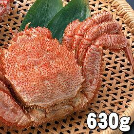 大型の毛蟹 630〜680g ボイル冷凍 北海道産の毛ガニです。毛がにの醍醐味でもあるカニ味噌とかに身と絡めてお召し上がりください。かに通販 蟹みそ 北海道グルメ食品 魚介類・シーフード カニ 毛ガニ  (ギフト食品)