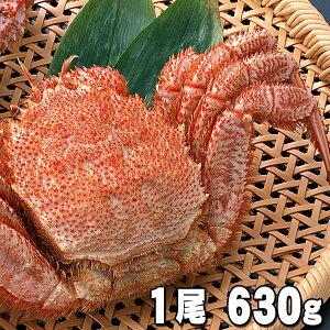 大型の毛蟹 630〜680g ボイル冷凍 北海道産の毛ガニです。毛がにの醍醐味でもあるカニ味噌とかに身と絡めてお召し上がりください。かに通販 蟹みそ 北海道グルメ食品 魚介類・シーフード