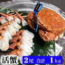 活毛ガニ 北海道産 500g前後 2尾入り 中型 毛蟹の美味しさを味わうなら、未冷凍の活け毛蟹。茹でたて毛がにの醍醐味でもあるカニ味噌。活毛ガニならかにのお刺身、焼きガニが食べられます。カニ通販