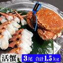 活毛ガニ 北海道産 500g前後 3尾入り 中型 毛蟹の美味しさを味わうなら、未冷凍の活け毛蟹。茹でたて毛がにの醍醐味でもあるカニ味噌。活毛ガニならかにのお刺身、焼きガニが食べられます。 (ギフト食品