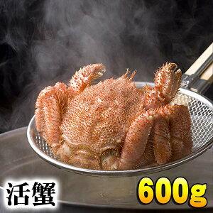 北海道産 活毛ガニ 600g前後 大型 毛ガニの美味しさを味わうなら、未冷凍の活け活蟹。茹でたて毛がにの醍醐味でもあるカニ味噌。活毛ガニならかにのお刺身、焼きガニが食べられます