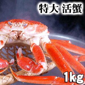 活本ズワイカニ 1.0kg(特大)茹でたてなら到着後、すぐ食べられる未冷凍のズワイ蟹です。活カニならではのお刺身用でも食べられます。焼きガニ、蒸し蟹もできる活ズワイガニ/活け松葉蟹