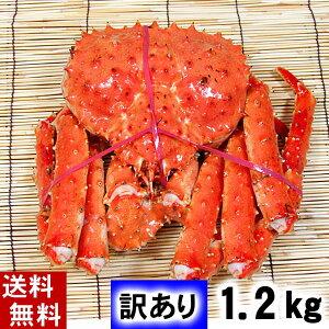 (送料無料)訳あり タラバガニ たらばがに 姿 1.2kg前後(小型) ボイル冷凍 足御折れありのわけあり品。たらば蟹食べきりサイズのカニ姿です。かに飯や、焼きガニも美味しい。北海道グ