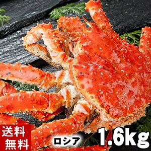 (送料無料) タラバガニ たらばがに 姿 1.6kg前後 小型 ボイル冷凍(ロシア産) たらば蟹贈答用のカニ姿です。かに飯や、焼きガニも美味しい。身の入りいいかに足。カニ通販、北海道グル
