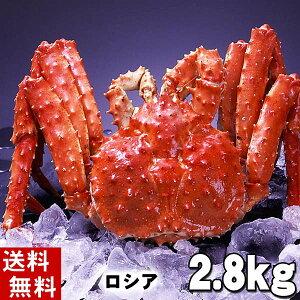 (送料無料) タラバガニ たらばがに 姿 2.8kg前後 中型 ボイル冷凍(ロシア産) たらば蟹贈答用のカニ姿です。かに飯や、焼きガニも美味しい。身の入りいいかに足。カニ通販、北海道グル