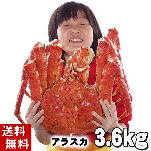 (送料無料) タラバガニ たらばがに 姿 3.6kg前後 特大 ボイル冷凍(アラスカ・北海道産) たらば蟹贈答用のカニ姿です。かに飯や、焼きガニも美味しい。身の入りいいかに足。カニ通販