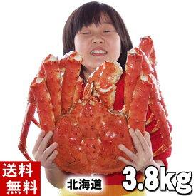 (送料無料) タラバガニ たらばがに 姿 3.8kg前後 特大 ボイル冷凍(北海道産) たらば蟹贈答用のカニ姿です。かに飯や、焼きガニも美味しい。身の入りいいかに足。カニ通販、北海道グルメ食品 魚介類