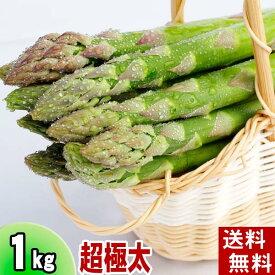 (送料無料)超極太3Lサイズ グリーンアスパラ 1kg前後 美味しい旬の北海道産(美瑛産 名寄産)あすぱらを産地直送。アスパラガスが食べられるのは春だけ。アスパラベーコンなど料理多彩。北海道グルメ食品 野菜・きのこ アスパラガス グリーンアスパラガス(ギフト用)