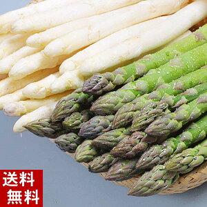 (送料無料)朝採りアスパラガスが2種類の味が楽しめるセット 合計2kg(グリーンアスパラ1kg、ホワイトアスパラ1kg) 美味しい旬の北海道産(美瑛産 名寄産)あすぱらを産地直送。アスパラ