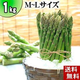 (送料無料)グリーンアスパラ M〜Lサイズ混合 1kg前後 美味しい旬の北海道産(美瑛産 名寄産)あすぱらを産地直送。早朝採れたてアスパラガスが食べられるのは春だけ。アスパラベーコンなど料理多彩。北海道グルメ食品 グリーンアスパラガス(ギフト用)