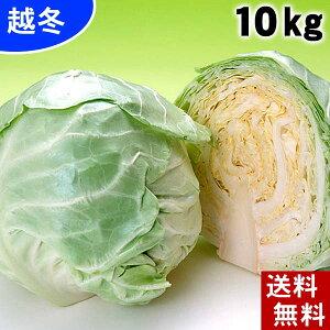 (送料無料) 越冬キャベツ 合計10kg(4〜7玉入り) 北海道産の真冬に食べる雪の下キャベツ。イチゴより甘い雪下キャベツ、糖度10度の葉物野菜。千切り、ロールキャベツ、サラダ、スープにご利
