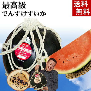 (送料無料)最高級でんすけすいか 秀品 3L大型 8kg コモ(縄)縛りの飾りつけ。黒い皮の中には赤の果肉、伝助・田助西瓜。ギフトに喜ばれる北海道のデンスケスイカ/でんすけスイカ、旬の