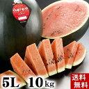 (送料無料)特大でんすけすいか 秀品 5L 10〜11kg 黒い皮の中には赤の果肉、伝助・田助西瓜。ギフトに喜ばれる北海道のデンスケスイカ/でんすけスイカ、旬の...