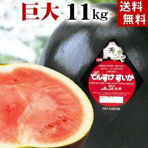 (送料無料)巨大でんすけすいか 秀品 6L 11kg以上 黒い皮の中には赤の果肉、伝助・田助西瓜。ギフトに喜ばれる北海道のデンスケスイカ、旬のフルーツ グルメ食品 フルーツ・果物 スイカ 黒