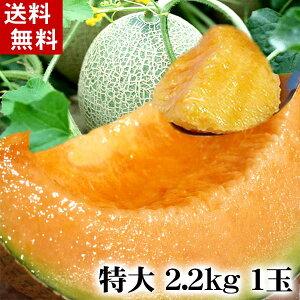 (送料無料)北海道赤肉メロン 2.2kg前後×1玉入り(特大サイズ)あの夕張メロンよりも糖度が甘く芳香な香りの北海道赤肉メロン。旬のフルーツグルメ食品 フルーツ・果物 メロン お中元ギフト