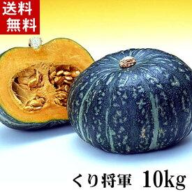 (送料無料)北海道産カボチャ 栗将軍 10kg前後(5〜7玉入り)粉質でホクホクな南瓜。てんぷらやかぼちゃスープ、かぼちゃの煮物など、様々料理にご利用できる緑黄色野菜です。北海道グルメ食品 野菜・きのこ かぼちゃ