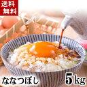 (送料無料)28年度 北海道産米 ななつぼし 5kg 白米、精米 つや、粘り、甘みがバランス良くまとまった和食に合うお米、ナナツボシです。特A評価を受け、マツコ...