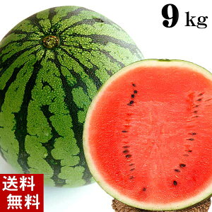 (送料無料)富良野・浦臼産マドンナスイカ 秀品 4Lサイズ 9〜10kg でんすけすいかよりも糖度が高い糖度12度の西瓜。シャリ感も良く値段も安い。旬のフルーツグルメ食品 フルーツ・果物 スイ