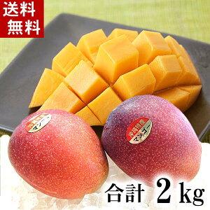 (送料無料)沖縄産 アップル マンゴー 合計2kg(4〜8玉入り) 南国沖縄のとれたてまんごー。ミキサーで簡単に作れるマンゴージュースやヨーグルトマンゴーも美味しい。グルメ食品 フルーツ