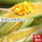 (送料無料)ピクニックコーン小型のとうもろこし11本入り(北海道名寄産スイートコーン)糖度18度の生で食べられる極甘トウモロコシ。生とうきび/生なんば、朝もぎ・朝獲りの野菜、産地直送です。【RCP】
