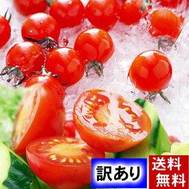 (送料無料)訳あり ミニトマト フルーツトマト プチぷよ 合計800g+200g増量(1玉あたり、15g〜20g 50個前後入り) 無農薬栽培。わけありのため、つぶれ有り。皮が薄い、ぷよぷよ質感の、北海道産ミニとまと ぷちぷよ、フルーツ感覚でお召し上がりください。