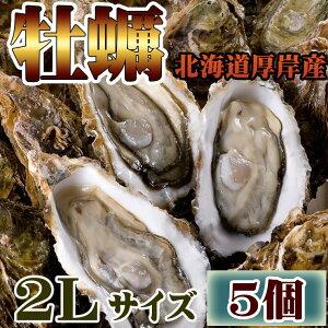 ギフト 牡蠣 かき お試し 北海道 厚岸 殻付き 活牡蠣 2Lサイズ(5個入) 冷蔵 生牡蠣 マルえもん ギフト