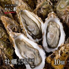 ギフト 牡蠣 殻付き 生牡蠣 カキ 北海道 厚岸 3Lサイズ(約10個) 冷蔵 マルえもん ギフト 内祝い お返し