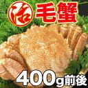 活毛蟹 活毛ガニ 1尾 (350〜400g前後) 北海道産 冷蔵 かに 毛蟹 活かに 活蟹 刺身も ギフト 贈答 内祝い