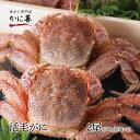 活毛ガニ 2尾セット (600g前後×2) 北海道産 冷蔵 かに 毛蟹 活かに 活蟹 刺身も ギフト 贈答 内祝い ランキングお取り寄せ