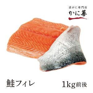 ギフト 甘塩シャケ ロシア産 紅鮭フィレ (0.8kg前後) 休息冷凍で高品質!甘塩の紅鮭を半身にカット済みで調理も楽々!真空包装 カット済み 冷めてもおいしいのでお弁当やおにぎりの具にも