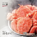 活毛蟹 活毛ガニ 3尾セット (450g前後×3) 北海道産 冷蔵 かに 毛蟹 活かに 活蟹 刺身も ギフト 贈答 内祝い