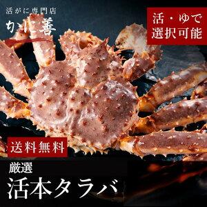 送料無料 特大 格安 タラバガニ カニ 1尾 2.5k〜3k 前後 高品質 冷蔵 ギフト 内祝い お返し お歳暮 たらば 生食 しゃぶしゃぶ カニ かに 焼きガニ