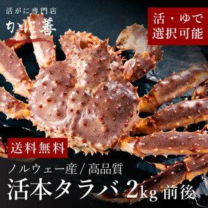 【厳選品】ギフト タラバガニ カニ 1尾 2kg前後 高品質 冷蔵 ギフト 内祝い お返し