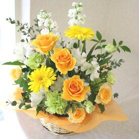 【新鮮な花をお届け】オレンジ色の明るいアレンジメント 送料無料 花 ガーベラ フラワーギフト お祝い 誕生日 結婚記念日 母の日 お見舞い 入学 卒業 送別 退職 開店 移転 就任祝い プレゼント 華やか 生花 花贈る 送る 生花