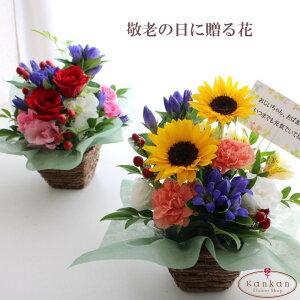 【秋の花】敬老の日に贈るりんどうのアレンジメント(レギュラーサイズ) 送料無料 花 アレンジメント ひまわり ユリ バラ フラワーギフト 華やか 青い花 ピンク 赤い花 お祝い 誕生日 結婚