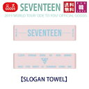 【おまけ付き】SEVENTEEN SLOGAN TOWEL【スローガンタオル】【2019 WORLD TOUR 'ODE TO YOU' OFFICIAL GO...