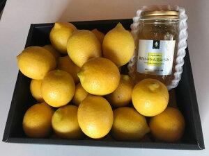 生レモンの観音山「はちみつレモンセット」レモンA級品2kg+みかんハチミツ300g