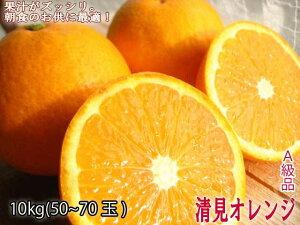 観音山清見オレンジA級品 10kg