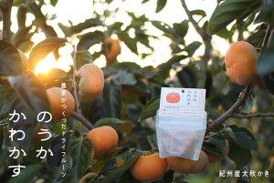 太秋柿のドライフルーツ