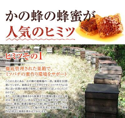 ★送料無料★蜂蜜(はちみつ)ハニーお試しセット国産、外国産の中から24種類から5つ選べる!お得なはちみつ5点セット蜂蜜専門店かの蜂