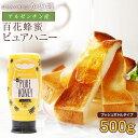 あす楽 純粋はちみつPURE HONEY(500g) 完熟蜂蜜 アルゼンチン産 百花蜂蜜