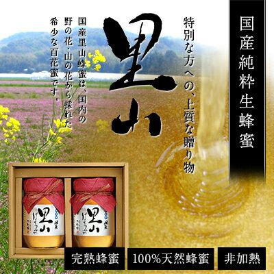 ギフト 国産 里山はちみつギフト 500g×2本セット 蜂蜜 贈り物 送料無料蜂蜜専門店 かの蜂