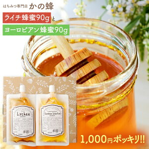 はちみつ 蜂蜜2種 エコパック(ヨーロピアン蜂蜜・ライチ蜂蜜) プチギフト お試しセット メール便 送料無料蜂蜜専門店 かの蜂 生はちみつ 非常食 100%純粋 健康 健康食品
