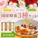 【母の日ギフト】【送料無料】国産蜂蜜(みかん・れんげ・そよご)250g×3本 ギフトセット蜂蜜専門店 かの蜂